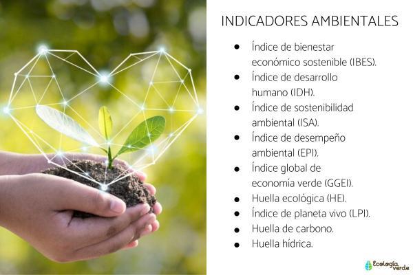 Indicadores ambientales: qué son, tipos y ejemplos