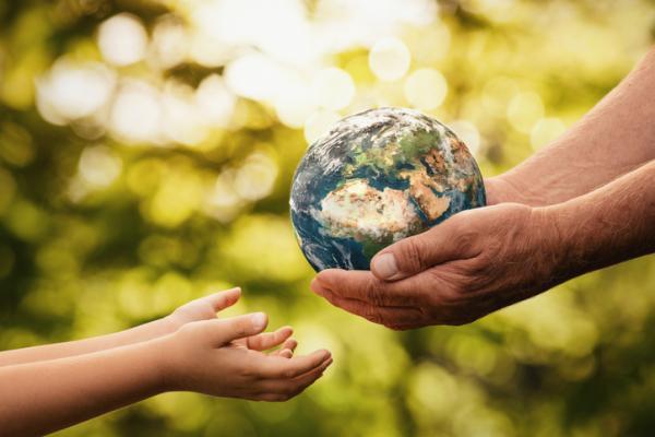 Cuál es la importancia de los ecosistemas - Por qué es importante proteger los ecosistemas