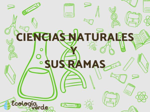 Qué son las ciencias naturales y sus ramas