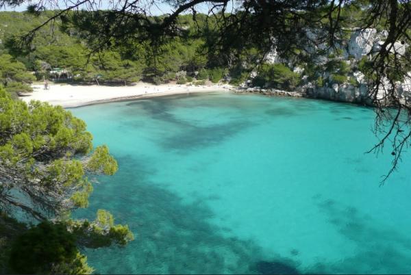 Principales ecosistemas acuáticos y terrestres de España - Los ecosistemas acuáticos de España