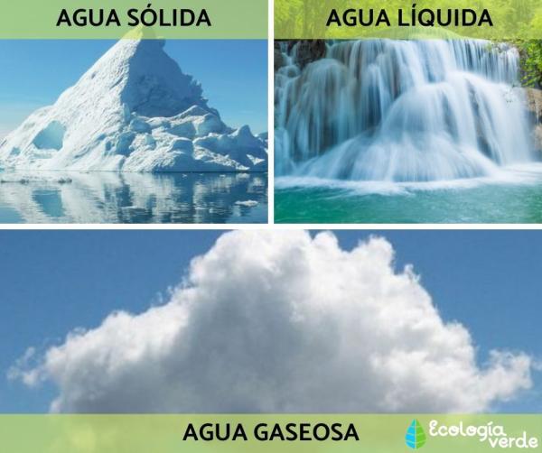 Tipos de agua - Tipos de agua según su estado y nivel de salinidad