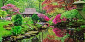 11 tipos de jardines