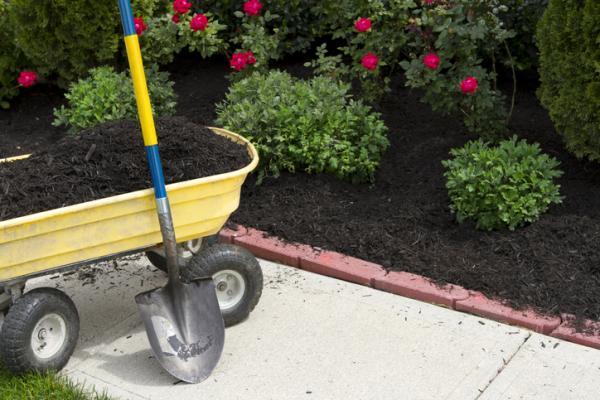 Qué son los fertilizantes y sus tipos - Qué son los fertilizantes