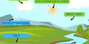 Facteurs abiotiques : Définition, caractéristiques et exemples