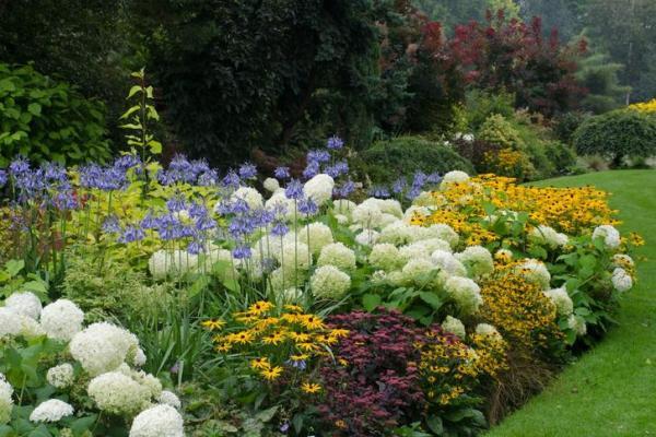 Plantes ornementales - Espèces représentatives et images - Qu'est-ce qu'une plante ornementale ?