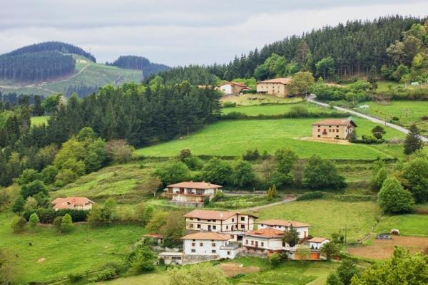 Écosystèmes urbains et ruraux - Définition et caractéristiques - Caractéristiques des écosystèmes ruraux