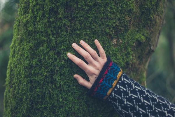 Conscience écologique - Définition et importance - Qu'est-ce que la conscience écologique ou conscience environnementale ?