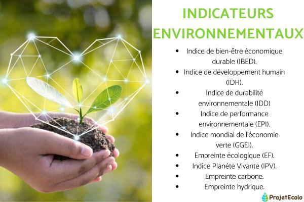 Indicateurs environnementaux : Définition, types et exemples