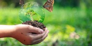 Préservation de la biodiversité - Définition, pratiques et importance