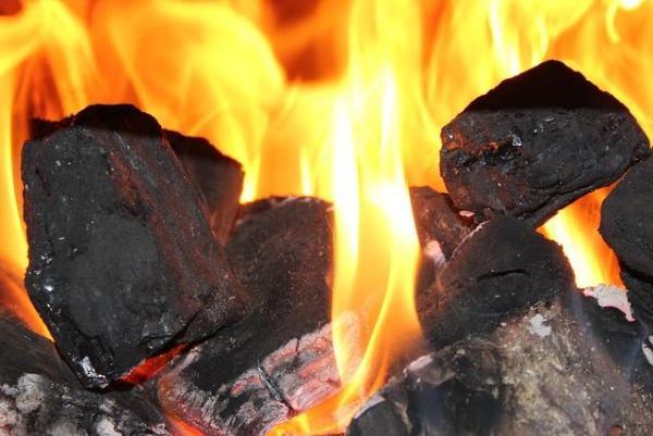 Énergies fossiles - Définition, exemples et formation - Qu'est-ce que le charbon et ses caractéristiques