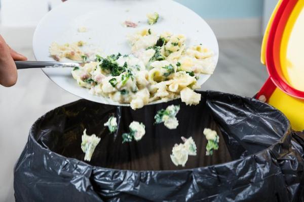 Gaspillage alimentaire : Définition, causes, conséquences et lutte