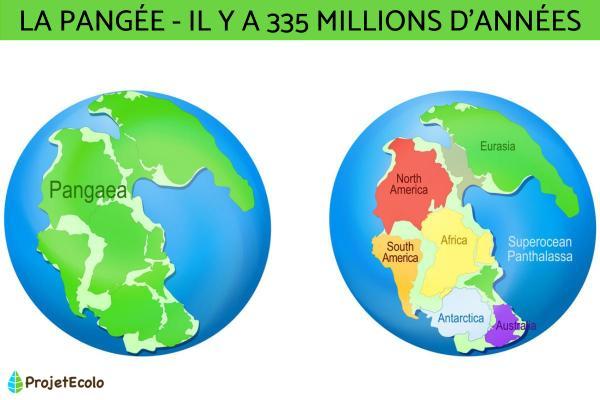 La formation des continents - Tout savoir sur l'évolution des continents - Comment les continents de la Terre se sont séparés les uns des autres