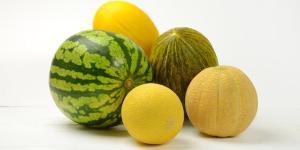 8 types de melons