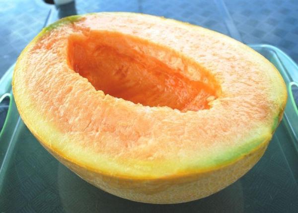 8 types de melons - Melon Yubari