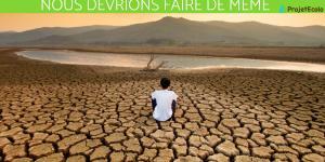 Citations sur le changement climatique - Courtes, de célébrités et en anglais
