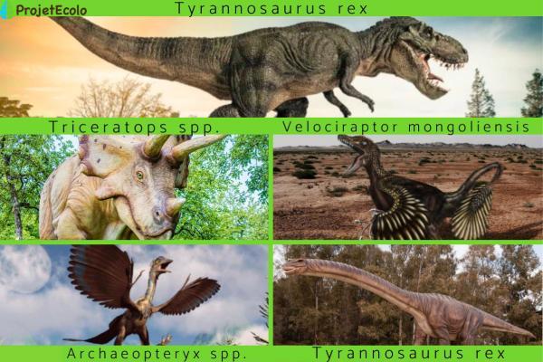Les dinosaures les plus connus - Types et espèces - Les dinosaures les plus connus