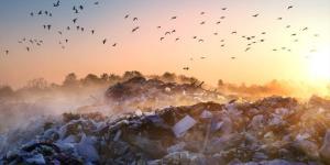 Que faire pour éviter la pollution environnementale ?