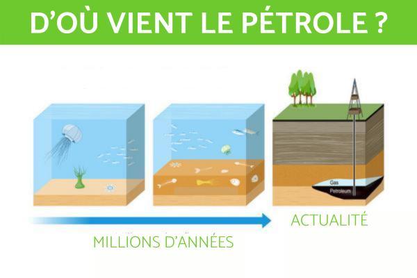 Le pétrole est-il renouvelable ? - D'où vient le pétrole ?