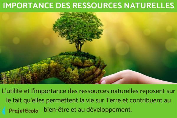 Importance des ressources naturelles - Économie et société
