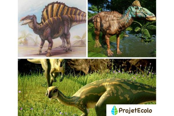 Dinosaures herbivores : noms, types, caractéristiques et photos - Dinosaures herbivores de Jurassic Park et Jurassic World