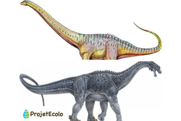 Dinosaures herbivores : noms, types, caractéristiques et photos - Exemples de noms des plus grands dinosaures herbivores - Liste