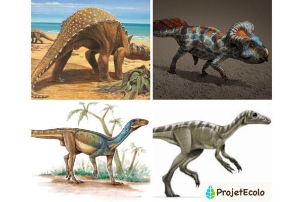 Dinosaures herbivores : noms, types, caractéristiques et photos - Exemples de noms des plus petits dinosaures herbivores - Liste