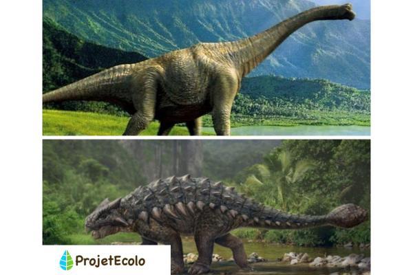 Dinosaures herbivores : noms, types, caractéristiques et photos - Noms des dinosaures herbivores - Liste d'exemples