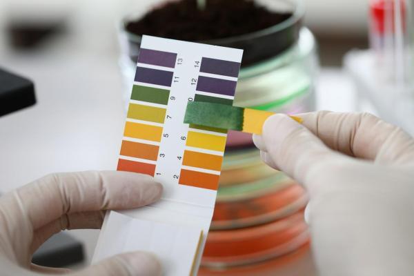 Comment vérifier le pH du sol