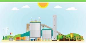 L'énergie biomasse : Définition, avantages et inconvénients