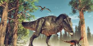 Dinosaures carnivores : noms, types, caractéristiques et photos