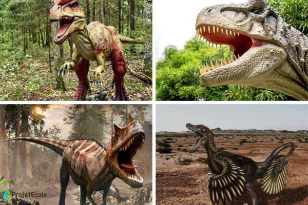Dinosaures carnivores : noms, types, caractéristiques et photos - Noms des dinosaures carnivores - liste d'exemples