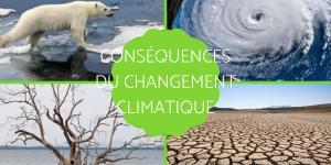 Conséquences du changement climatique