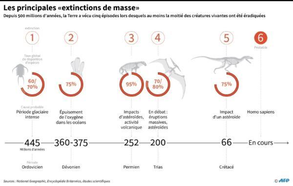 Extinctions massives ou crises biologiques : Définition, causes et liste - Quelles sont les 6 extinctions massives ?