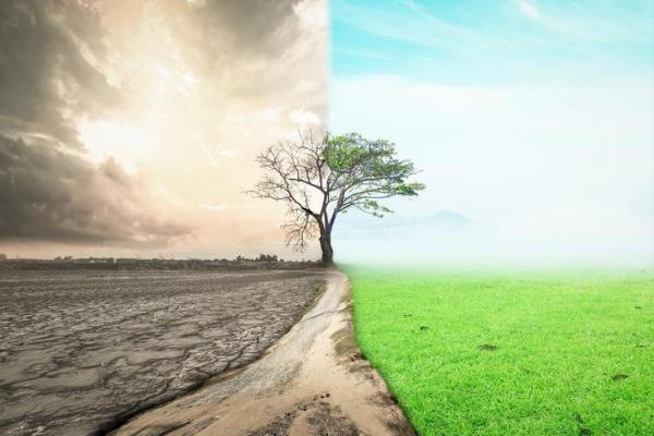 20 problèmes environnementaux - Solutions et exposé sur l'environnement